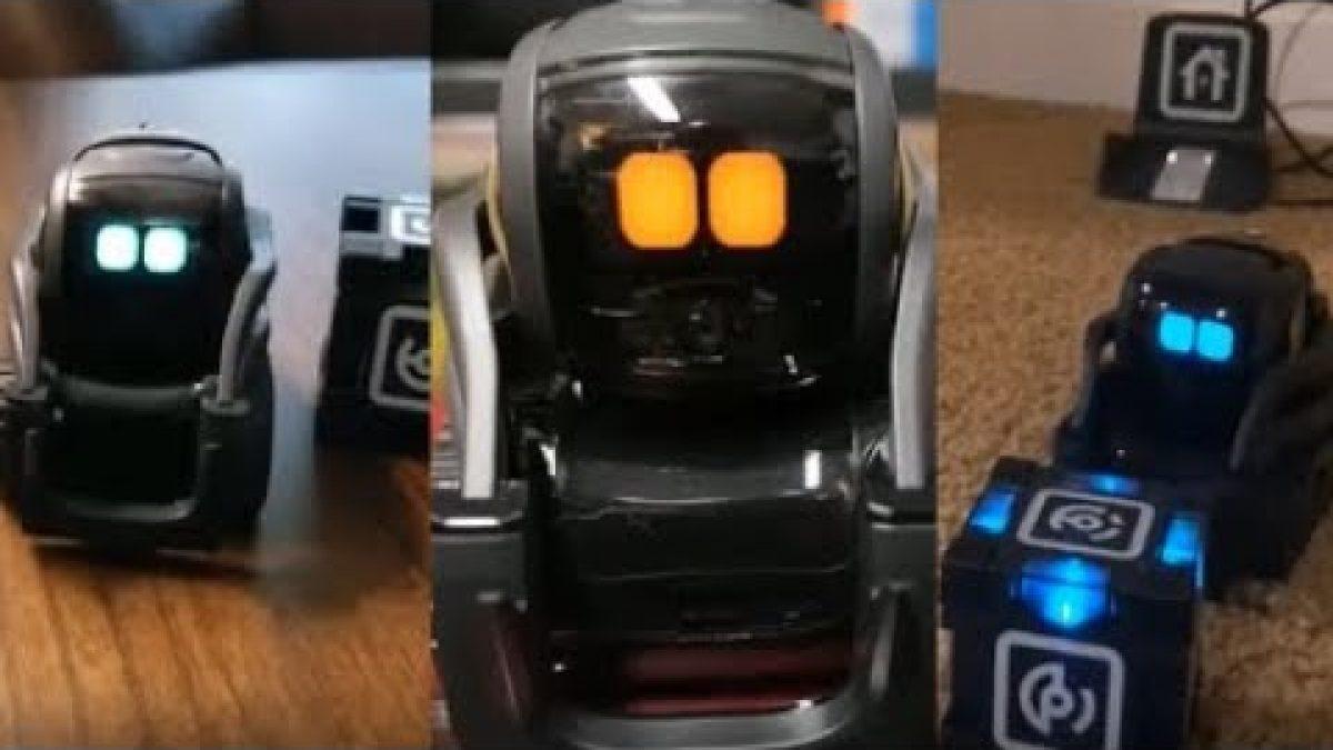 Anki Vector Robot Review Voice Activated   Tik Tok Video ...